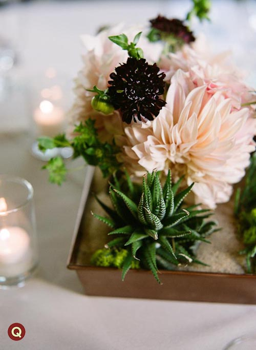 succulent_and_sand_centerpiece
