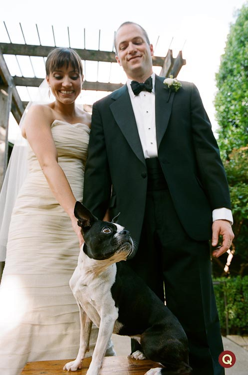 wedding_couple_portrait_with_their_Boston_Terrier