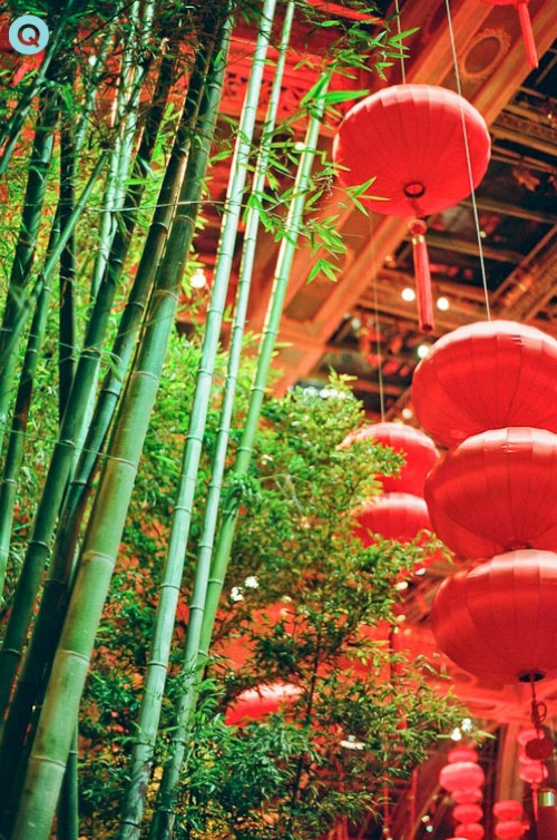Bamboo And Lanterns In Bellagio\'s Botanical Garden | Q Blog ...