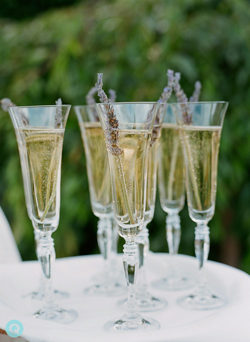 QWeddings lavender champagne wedding Lavender and blue dilly dilly
